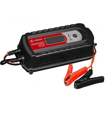 Battery charger Discovery 120